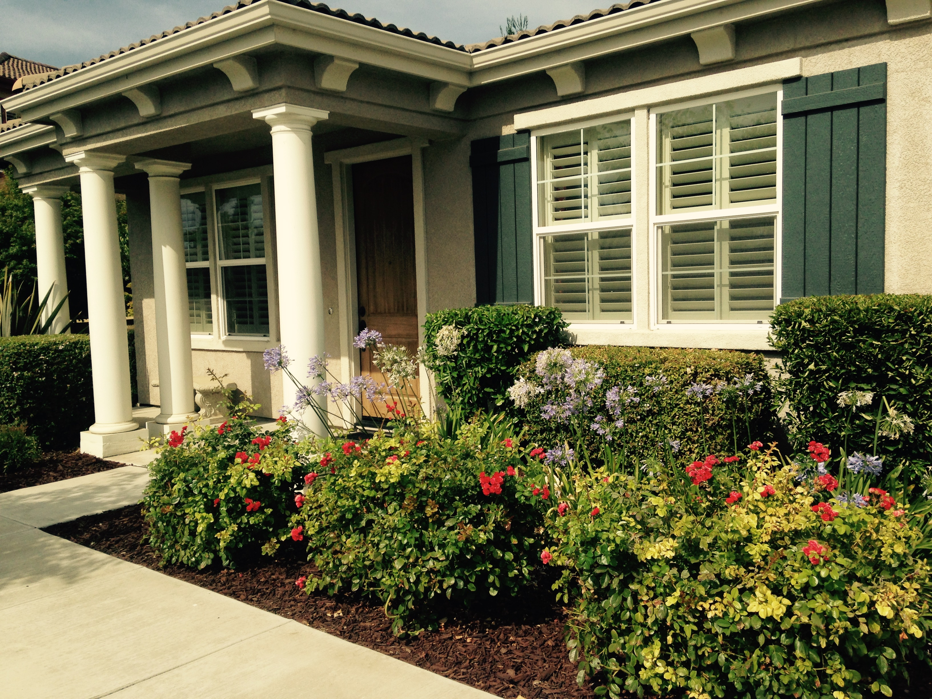 Homes for sale in Lodi what is my house worth real estate in